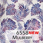 6558 Mulberry
